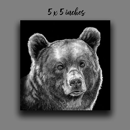 'Brown Bear' Signed Print