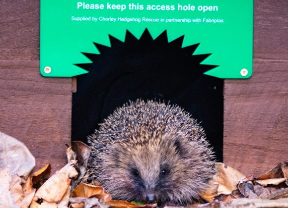 Hedgehog Highway Sign x2