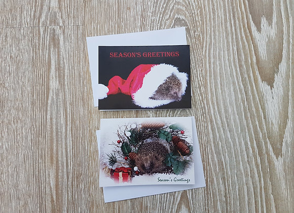 Christmas Card Pack (Goldie & Shaw)
