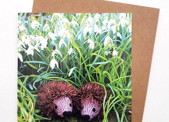 Hedgehog Card (Snowdrops)