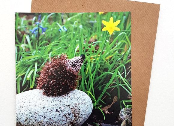 Hedgehog Card (Daffodil)