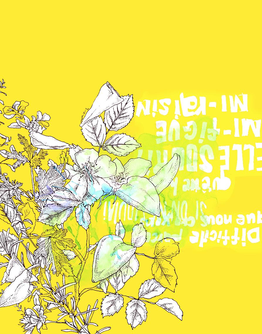 スクリーンショット 2017-04-26 15.22.57