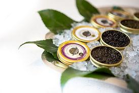 Caviar-6.jpg