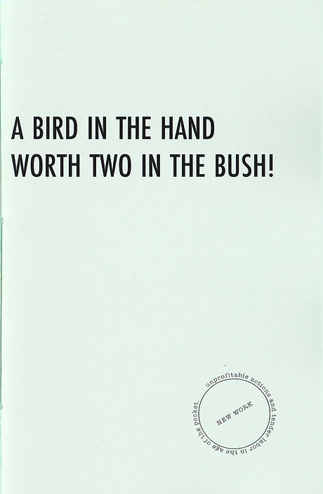 a bird in the hand cover.jpg