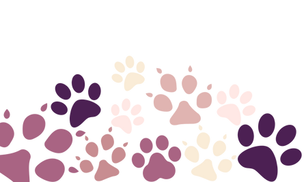 paw banner.png