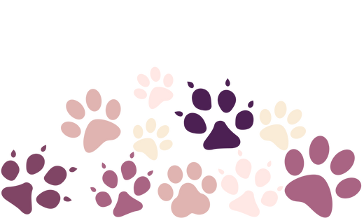 paw banner2.png