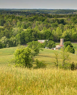 Symmes Creek Ranch Hilltop View