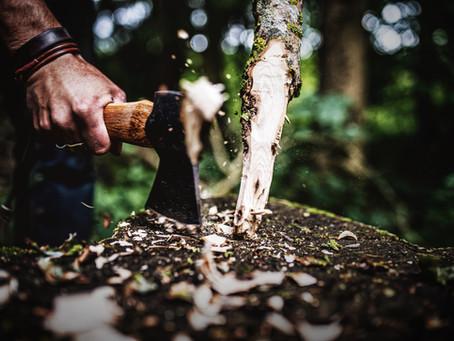Handliche Beile für Pioniere, Sammler und Kleinholzmacher