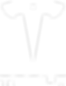 Tesla Logo white.png
