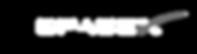 Space X Logo white.png