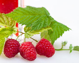 Maline sestavine soka iz jagodičevja Synergy Mistify