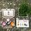 Thumbnail: Eco-egg coloring & grass growing kit
