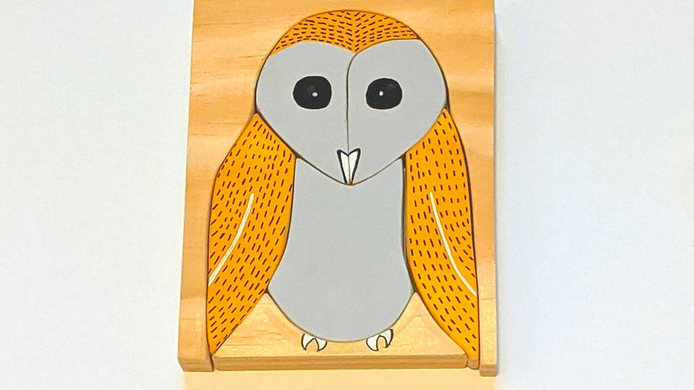 Night Barn Owl