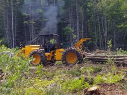 skidder logging treework