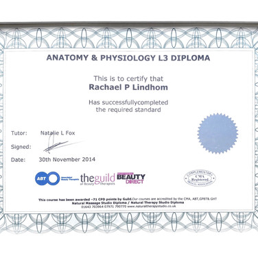 Diplom Anatomy and Physiology L3 30 Nov