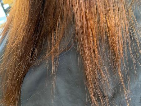 ビビリ毛の回復も乾かすだけ❤️