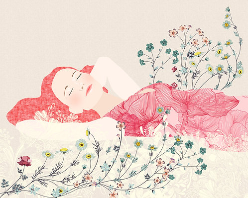 Ilustraciones 24x30cm