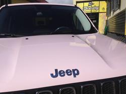 Jeep Renegade Mary Kay