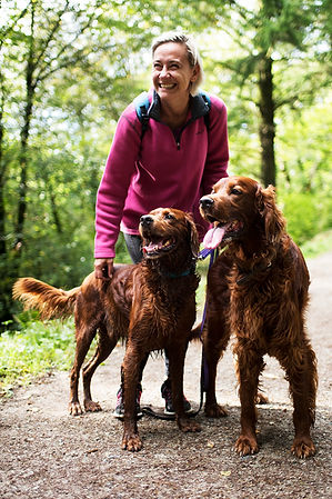 The Cornish Dog_Irish Setter Walk_01.jpg