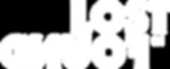 LostInFound Logo.png