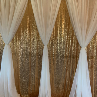 Double Layer Sequin and Sheer Backdrop