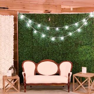 Boxwood Greenery Wall