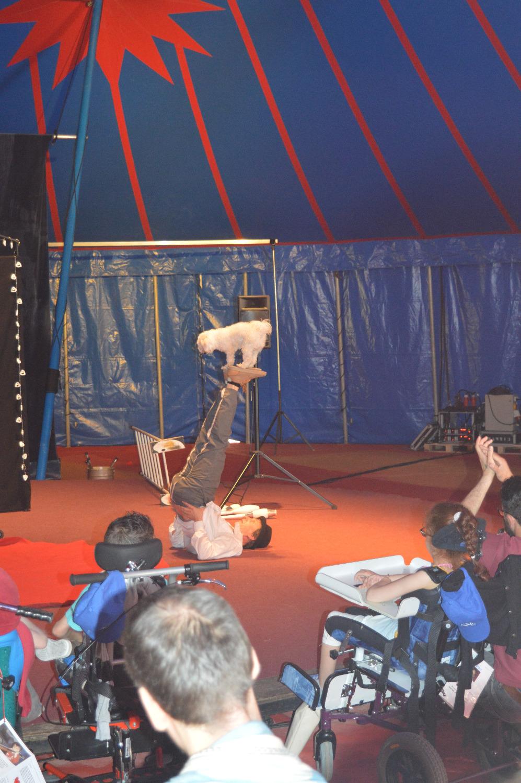 9 juin cirque 4_edited