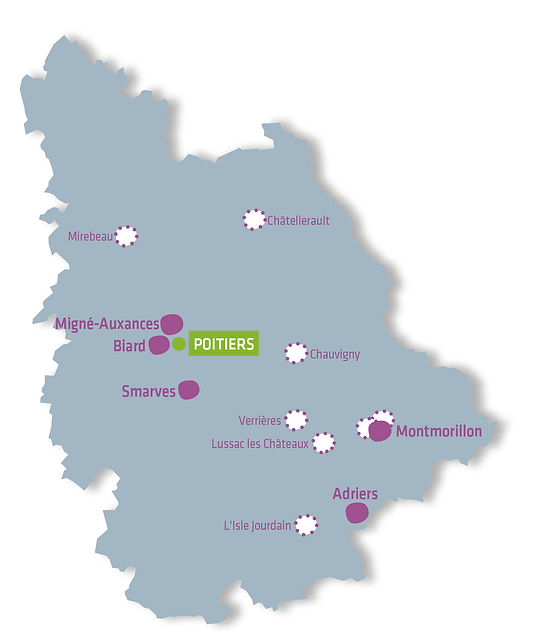 carte Vienne établissements PEP 86.jpg