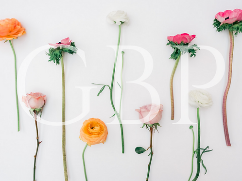 Stock Photo - Flowers on a White Background