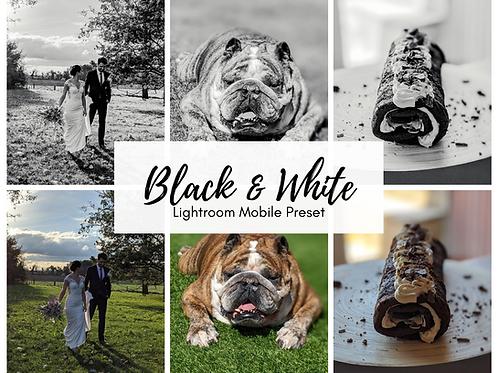 Black & White Preset