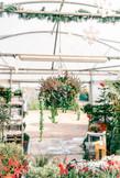 Brittons Plant Nurseries (40 of 46)_webs