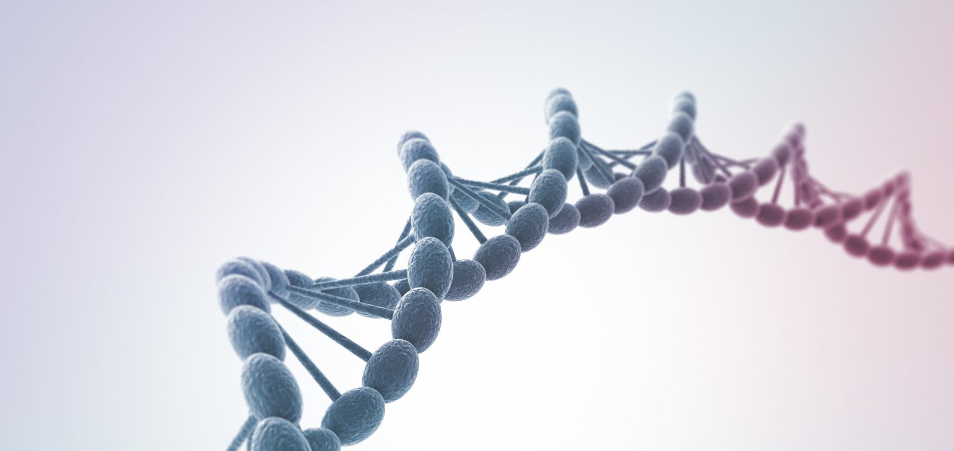 Генетический паспорт здоровья и старения