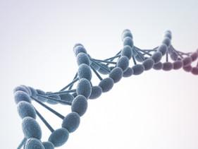 Een bacterie is in staat genen aan- en uit te zetten