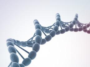 Mikrobiom i ljudska genetika              Zašto je zdravlje vašeg stomaka važno za vaše gene?