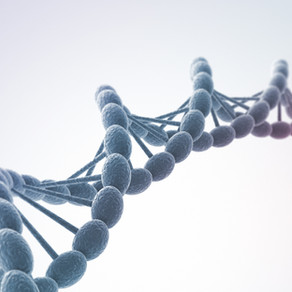 Nouvelle molécule - Congrès Néphrologie