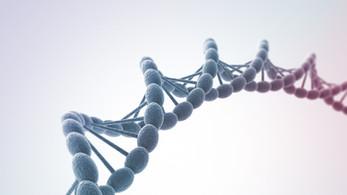 Biochemical Individuality: Our Unique Wellness Prescription
