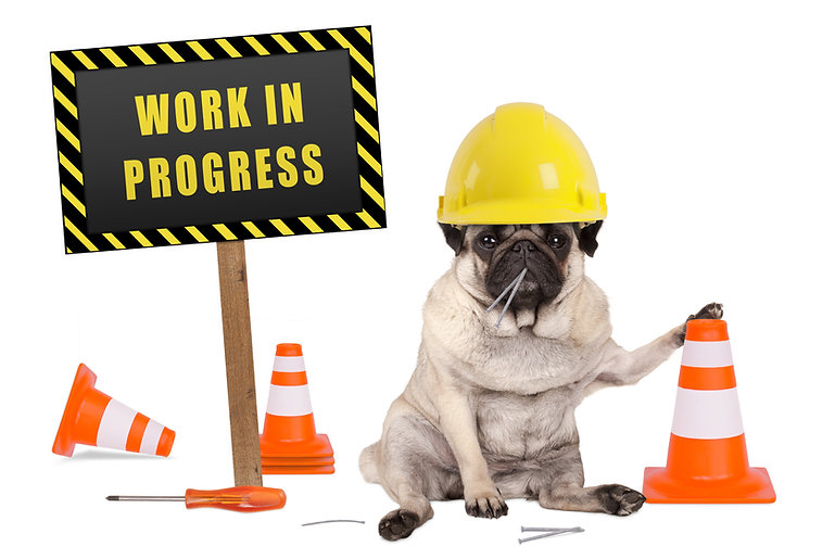 pug dog with constructor safety helmet a