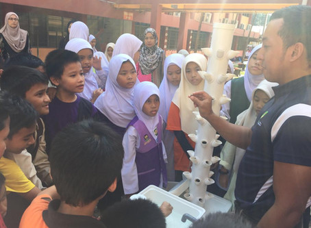 Spreading Awareness On Aquaponics Urban Farming Program Through Schools In Malaysia