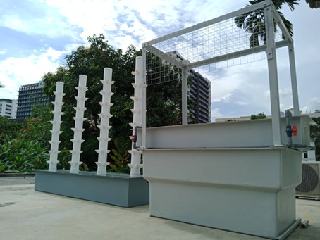 Urban Farming in Malaysia - The tech behind the industry