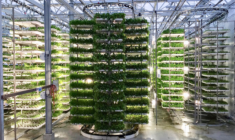 Vertical farming technology smart farming building