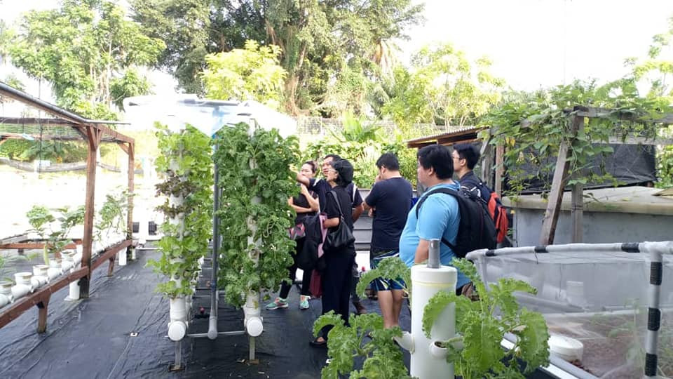 Small Aquaponics System Training Cyberjaya