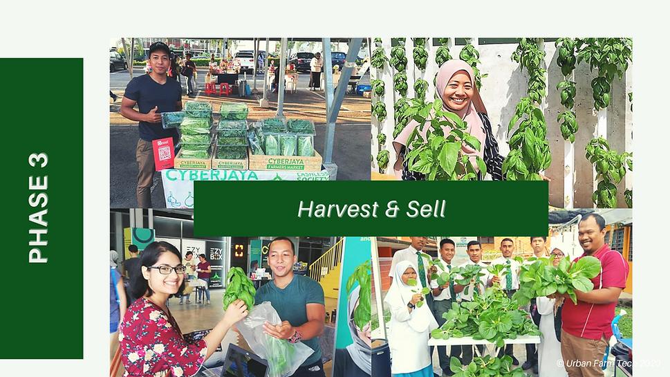UFT CSR program, urban farming.png