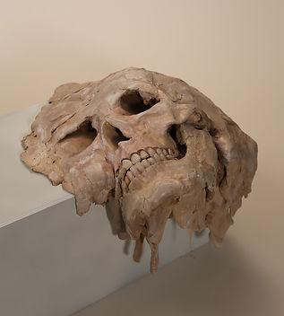 skull_web.jpg