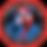 world team usa logo_3x.png