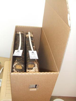 Опаковане в архивни кутии