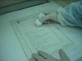 Реставрация на книги и документи