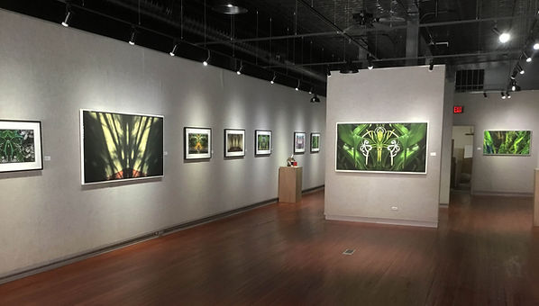 Galesburg Civic Art Center, 2019