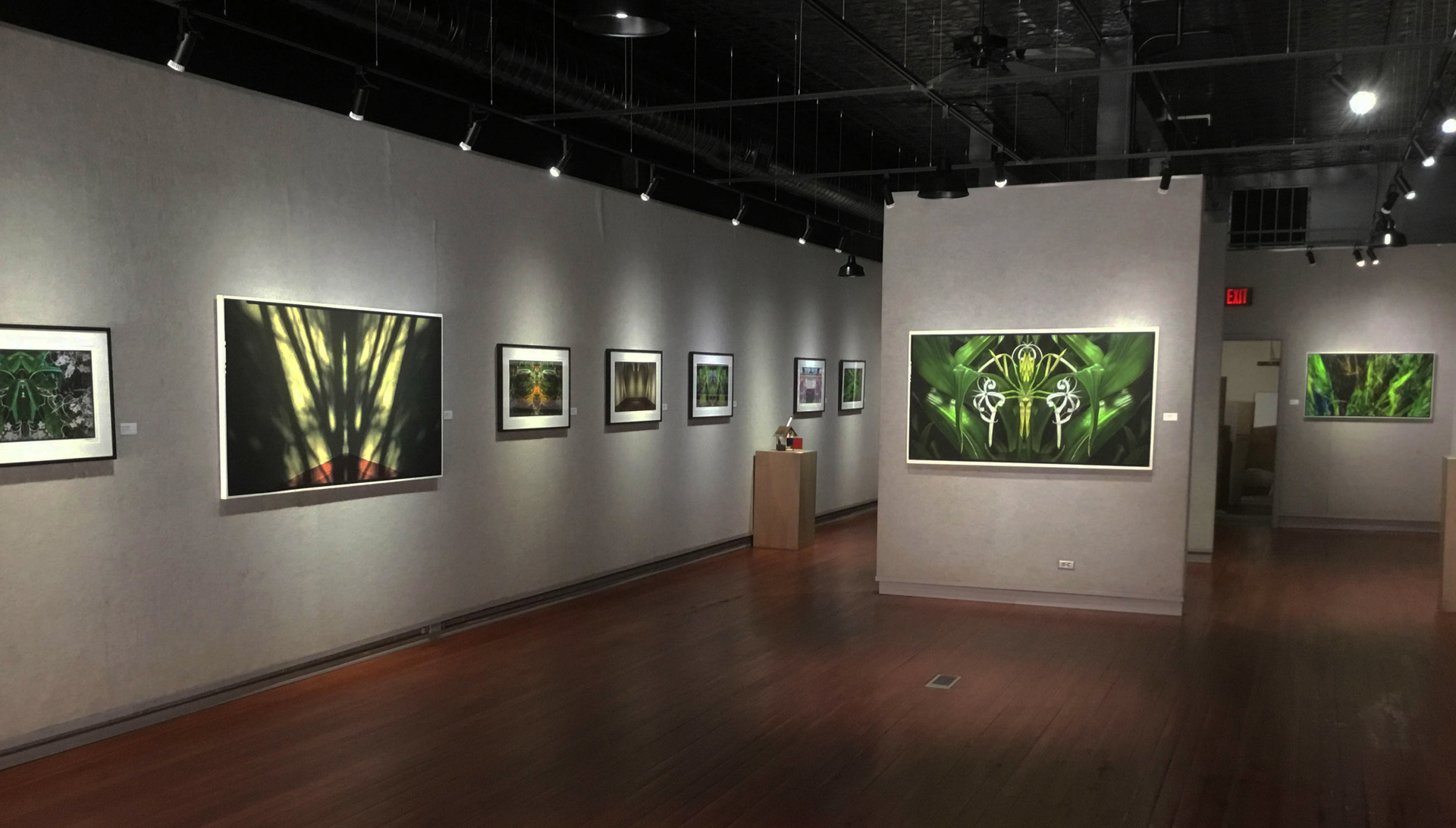 Galesburg Civic Art Center Exhibition
