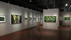 Galesburg Civic Art Center Exhibition