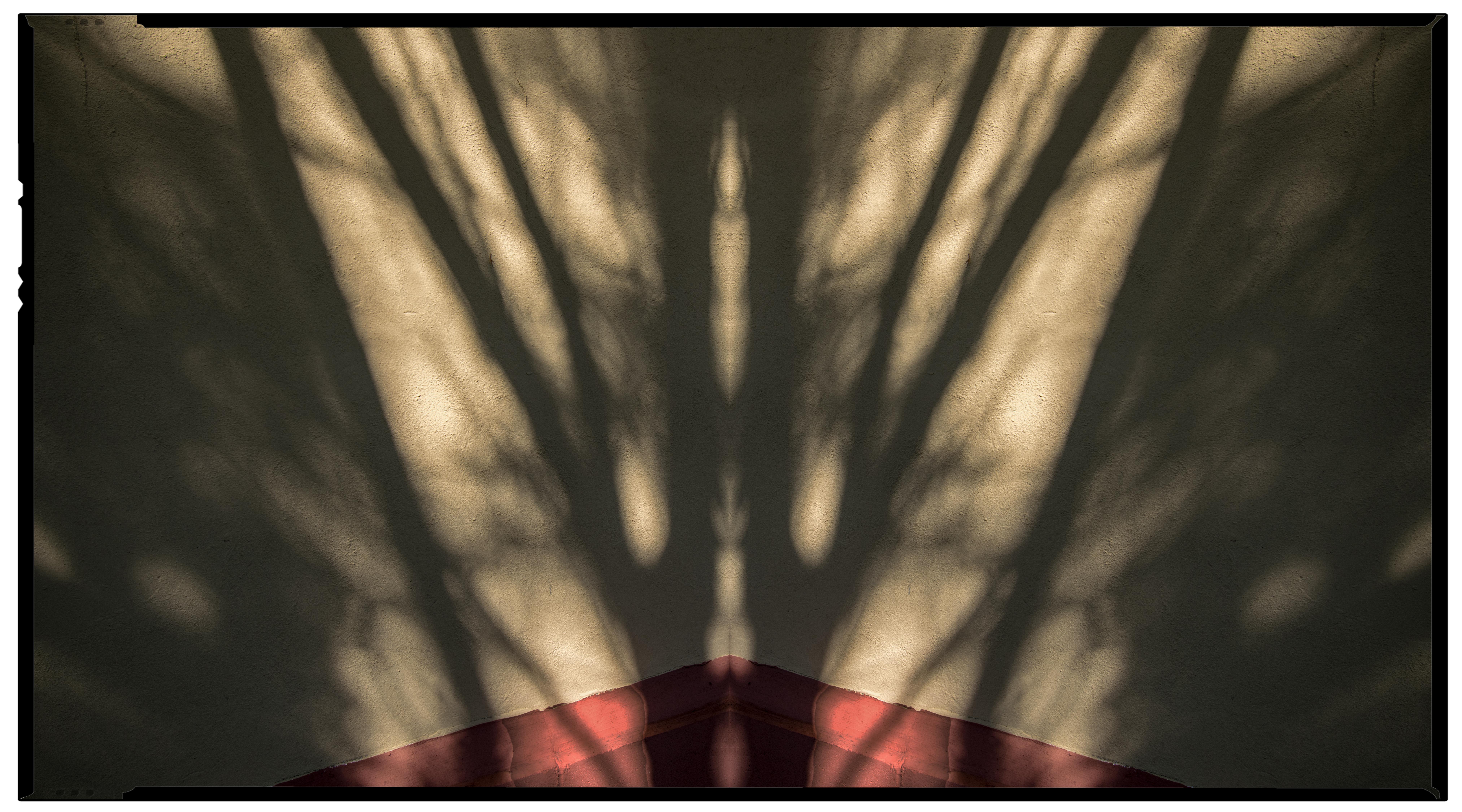 July - Corner Shadow (Tree Corner)